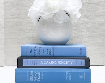Blue Old Books for Shelf Decor, Vintage Decor