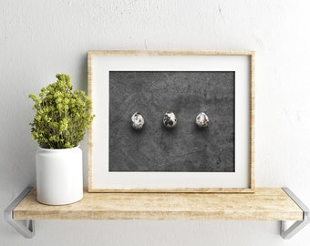 quail egg v. two // food photography print // kitchen decor // kitchen wall art  // dining room wall art // rustic wall art // egg print