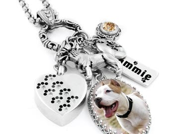 Pet Cremation Urn Necklace, Memorial for Pet, Loss of Pet, Grief Gift, Pet Urn, Dog Remembrance, Pet Ashes