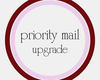 DOMESTIC PRIORITY MAIL