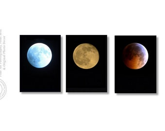 Full Moon Prints Moon Phases Blue Moon Harvest Moon Eclipse Moon Red Moon Full Moons Different Moons Blood Moon Lunar Eclipse Moon Phases