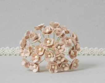 10 mm  / 20  Brown   Mulberry Paper  Flowers
