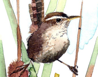 ACEO Limited Edition 9/25 -Cute marsh wren, in watercolor painting, Collectible bird art, Gift idea, Housewarming gift, 2.5x3.5 inches art