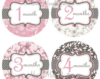 Baby Girl Monthly Stickers, Pink, Grey, Floral Month Baby Stickers Baby Shower  Photo Prop  Ready For  Giving