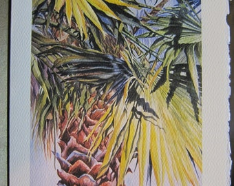 Florida Palmeto 5 x 7 Note Card watercolor print with Deckled Edge Envelope
