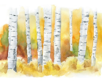 Birch Trees Watercolor Painting - 10 x 8 - Giclee Fine Art Print - 11 x 8.5 - Autumn Fall