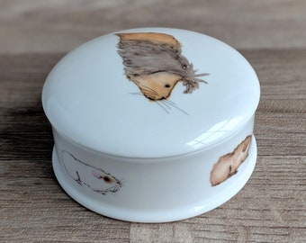 Fine China Guinea Pig Trinket Box