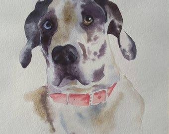"Watercolour dog portrait from photo, Original  pet painting, Portrait painting 11 x 8"" Original art painting, watercolor painting, Dog art"