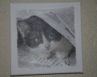 "small painting, square, ""cat under the newspaper"""