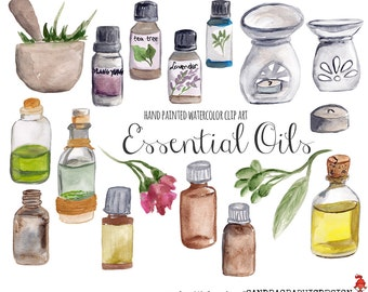 Essential oils clip art, hand painted watercolor clipart (5233)