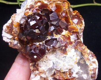 Lustrous Gemmy Spessartine Garnet & Smoky Quartz Mineral Specimen China B4513