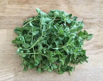 Dried Greek Oregano - Origanum Vulgare - 10 Grams