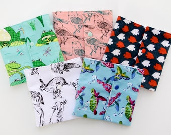 Animal Classification Language Pouches