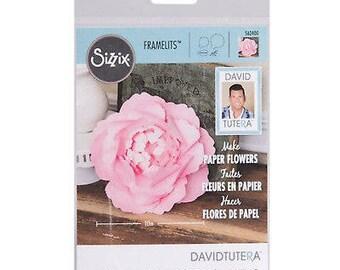 Sizzix Large Peony Framelits By David Tutera 562400 Scrapbooking & Paper Craft Supplies
