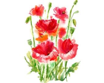 Red Poppy Flowers Original Watercolour Painting 68