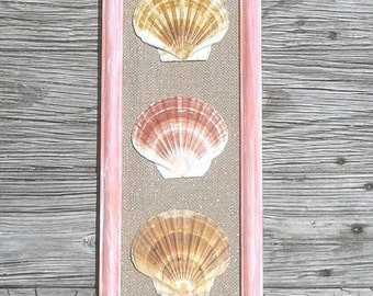 Seashell wall decor, seashell wall art, gorgeous hand painted frame with scallop shells, coastal cottage, mermaids den