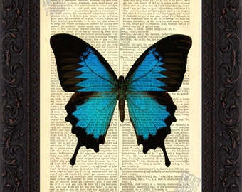 Stunning Blue Butterfly  Print  Mixed Media on upcycled Dictionary Vintage  book Page