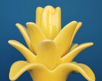 Pineapple Top Digital Print