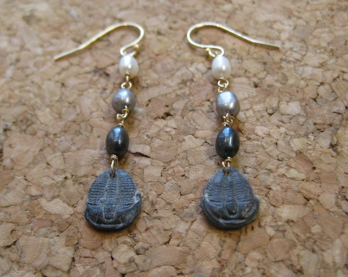 Ascent Earrings 300 Million Years Old Trilobite