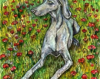 Weimaraner Dog Art MIS-PRINT