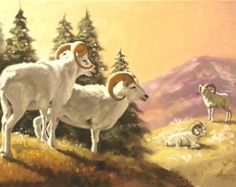 Dall Sheep wildlife animal large 24x36 oils on canvas painting by RUSTY RUST / S-106