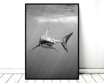 Printable Art Poster Great White Shark Monochrome Nature Wall Art. Printable *INSTANT DOWNLOAD PDF* A2, A3, A4, resizable
