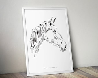 Horse, animal illustration giclee print gift A4