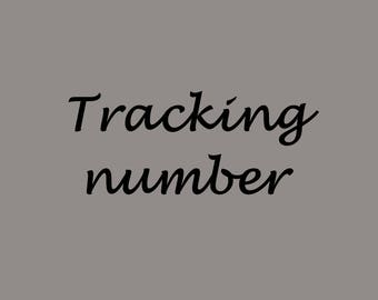 Tracking number to USA