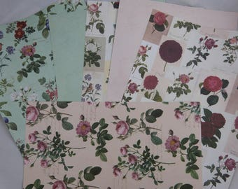 "Assortment of floral papers ""botanique"""