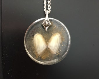 seashell butterfly pendant with beach sand and brass