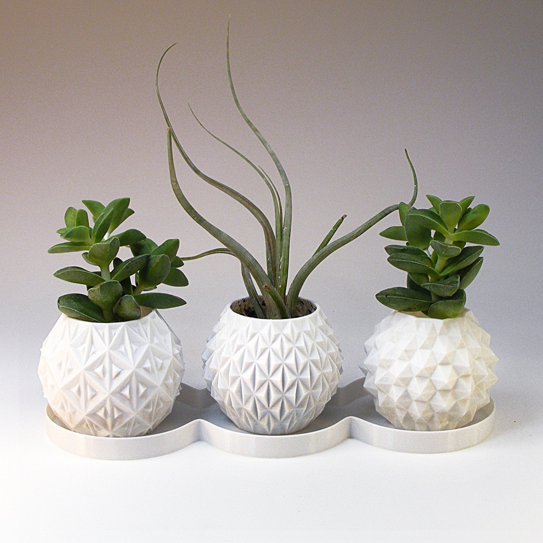 Mini Planters Succulent Planter Geometric Planter Set of 3