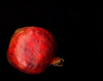 pomegranate. 11x 14