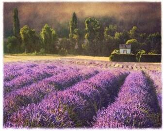 Lavendel 5, 11 x 14 Original, signiert und mattiert Kunstdruck