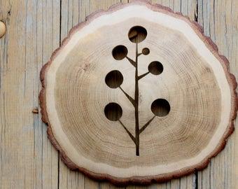 Oak tree Slice Wall Hanging, Reclaimed Wood Wall Sculpture,   oak Wood Wall Art, Wood Slice Wall Art, Rustic Modern Decor Natural edge wild