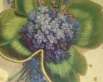 Nice Vintage Floral Postcard (Forget-me-nots and clover)