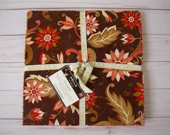 Swiss Chocolate Ten-Square by Amanda Murphy for Robert Kaufman
