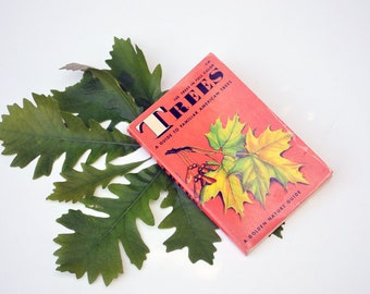Vintage Tree Guide   A Golden Nature Guide   American Trees Book   Golden Guide Book   Nature