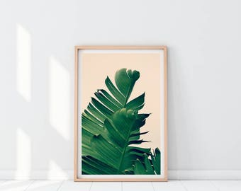 Tropical Leaf Printable Print, Botanical Print, Banana Leaf Print, Tropical Print, Green Leaf Poster, Tropical Leaf, Banana Leaves