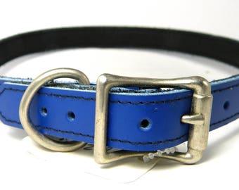 Royal Blue latigo leather buckle collar