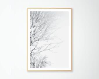 Print Blur