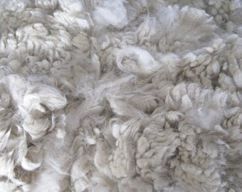 White Alpaca Fleece, Raw and Unwashed Fiber, 10 ounces for Spinning, Felting, Dyeing, Luna