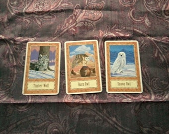 3 Card Single Question Reading