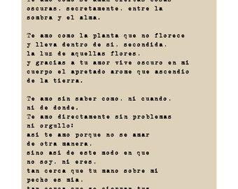 Sonnet XVII by Pablo Neruda - Spanish translation
