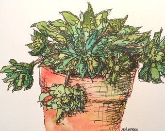 Succulent in a Pot a 4x6 original watercolor by Nan Henke
