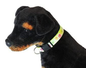 Neon Paint Splatter Adjustable Dog Collar- Nylon, Webbing, Durable