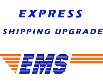 EMS, Expedited Shipping, Fast Delivery (5-10 business days)
