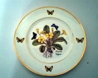 Royal Denube Hand painted Botanical plate with dainty butterflies| Painted Porcelain plates Vintage plates & I Godinger Decorate plates pair of Vintage 1855 Emailde