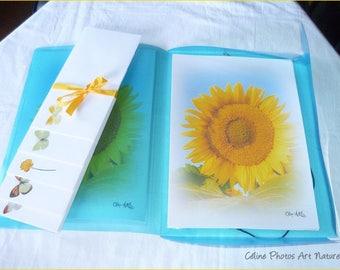 Papier à lettres réalisé à partir des  photos de Céline Photos Art Nature de plumes et de fleurs jaunes