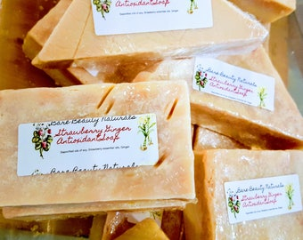 Strawberry Ginger Antioxidant Soap // FREE exfoliating soap bag // Root Chakra Healing