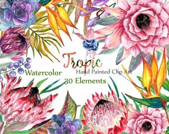 "Watercolor Floral Clip art: ""FLORAL CLIPART"" Floral tropic Clip Art Tropic Clipart Watercolor flowers diy elements wedding invitation"